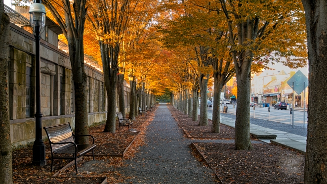 Hand held HDR of a walkway in Princeton New Jersey in the autumn.