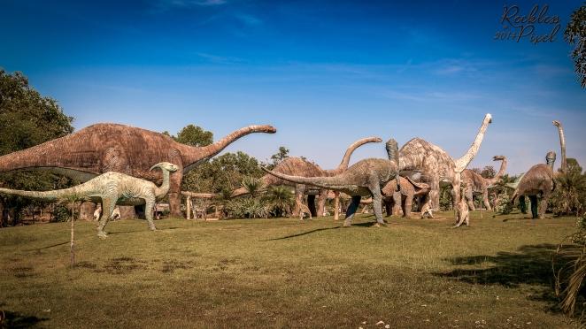 Dino Field